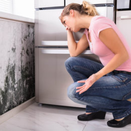 Dicas para evitar mofo em sua casa
